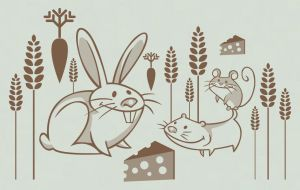 Rodents by mirelai