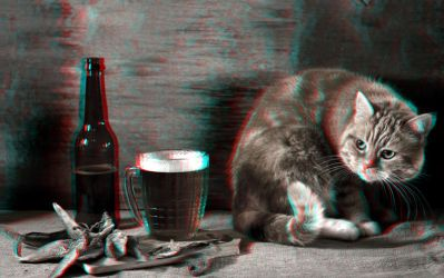 Beer and Cat 3-D conversion by MVRamsey