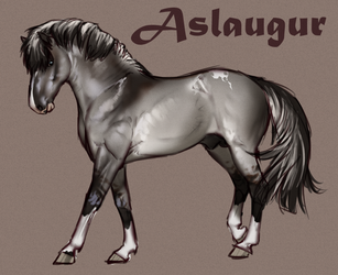 The smexyest Storhestur - Aslo by BH-Stables