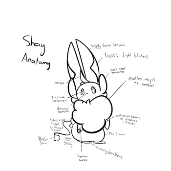 Shay Diagram by shayanbes