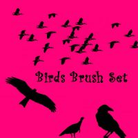 Birds Brush Set by eMelody