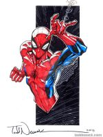 Spider-Man by ToddNauck