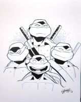 FCBD 2013: Ninja Turtles by stratosmacca