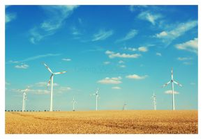 wind power by guality
