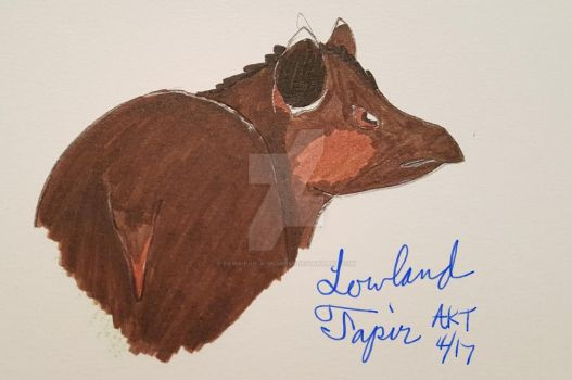 April Animal: Lowland Tapir by Paws-for-a-Moment