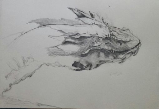 Smaug: Sketch in Progress by ray-agustin