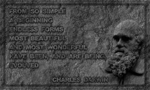 Charles Darwin - Stone Tablet by PlaysWithWolves