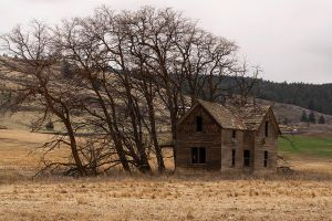 Alone and Abandoned by TRunna