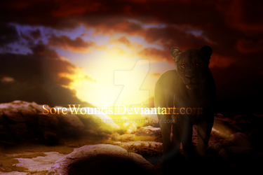 With the rise of a new day. by SoreWounds