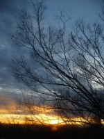 evening december sky 2 by nicolapin