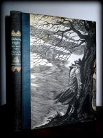 Wuthering Heights by evilpokejuggalette