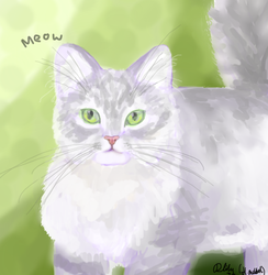 Cat- Fluffy silver tabby (computer art) by Dappelily