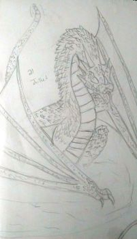 Old but not that old dragon drawing #1 by ThePhoenixGirl31