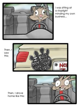 things people admit on thier cars by RabidSquirrelNinja