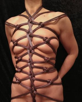 Silver and Gold Body Harness by Angel666JR