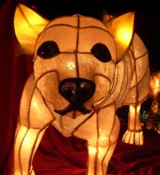year of the dog by bricket