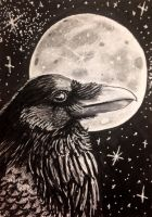 ACEO: Evening's Gift by DanielleMWilliams