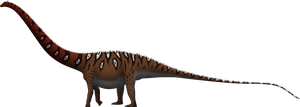 Supersaurus lourinhanensis by SpinoInWonderland