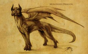 C, H, and MB - Molosser Dragon by tacticangel