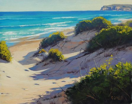 Beach Dunes by artsaus