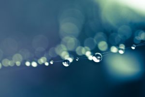 Subtle drops by BWozniakPhotography