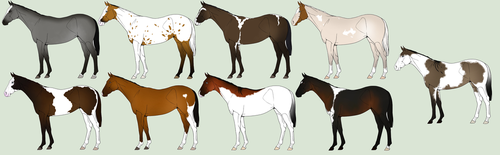 Foals For Moon by WildForests-Stables