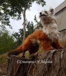 OOAK Posable ArtDoll :Tikus the marten: by CreaturesOfAkasha