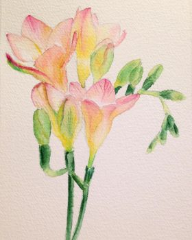 Watercolor practice by sziabori