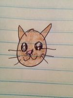 a cat i colored by Nadeeta