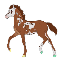 N3129 Padro Foal Design for DarkestNation by casinuba