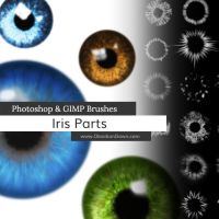 Iris Parts (Eyes) Photoshop and GIMP Brushes by redheadstock