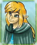 The Princess of Wild Hyrule by FayeleneFyre