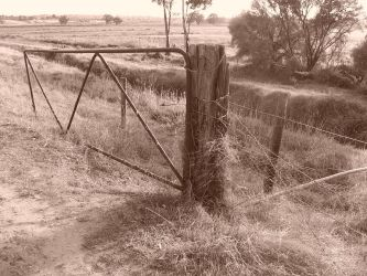 Fence by Sazroy