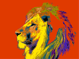 Lion Head Abstract Colored by SecretsOfAPoet