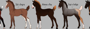 Lineage Zlesdin Foals | CLOSED by FeatherCandy