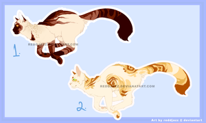 Cat Adoptables AUCTION    CLOSED by reddjazz