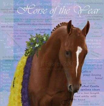 Horse of the Year by Greatalmightyqueen