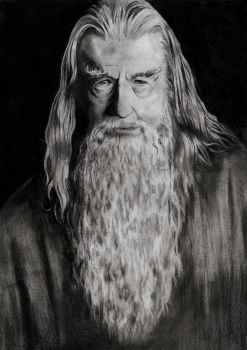 Gandalf by gabor5555