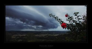 Nature Force by donk00085