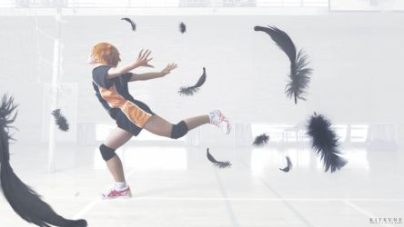 Haikyuu: Fly by LUNARU