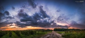 Cool, windy autumn sunset by NorbertKocsis