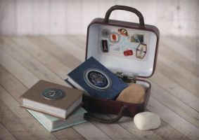 Travel suitcase of Harry the otter by Keila-the-fawncat