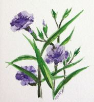 Violets by Anterie