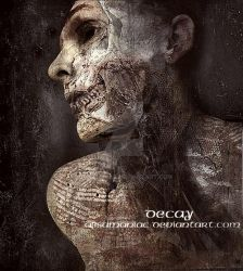 Decay by absumaniac