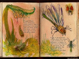 Triad Flies::field study by BonePileStudio