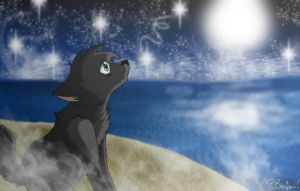 Kane at the midnight sea by Forest-shrine-wolf