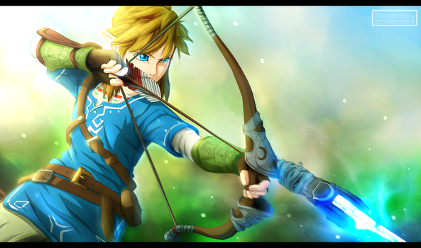 The Legend of Zelda WiiU - The new Hero by Kortrex