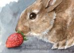 Strawberry Bunny ACEO by Pannya