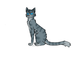 Warrior Cats: The Blind Medicine Cat by FussyFeline
