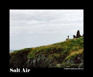 Salt Air by Loxly